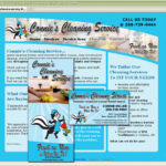 Connie's Cleaning Service - Coordinated Marketing Materials